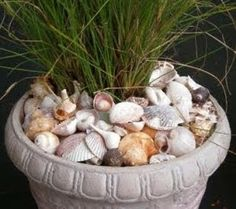 seashell stepping stone | ... have an actual outdoor space. Edenmakers calls this seashell mulch