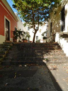 El Viejo San Juan 9