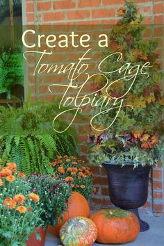 Create a Tomato Cage Topiary - Surroundings by Debi
