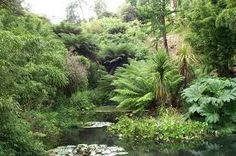 lost gardens of heligan -