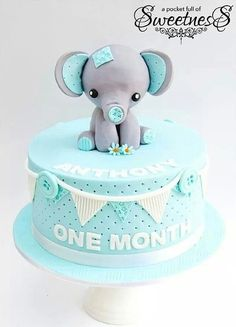 Our Baby Elephant Birthday Cake is made with delicious mud cake and decorated with bunting and a hand crafted baby elephant sitting upright on top. The perfect birthday cake for young kids. Elephant Birthday Cakes, Elephant Cakes, Elephant Baby, Fondant Elephant, Animal Birthday, Torta Baby Shower, Cake Wrecks, Cute Cakes, Pretty Cakes