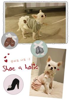 Louisdog Shoe-a-holic Dress