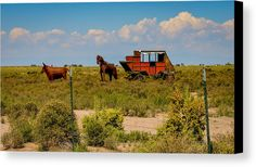 Wild West Canvas Print featuring the photograph Wild West Ranch Art by Debra Martz