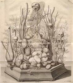 """Ah Fate, ah Bitter Fate!"" An etching from Thesaurus anatomicus."