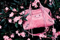 Great Pink Bag source: favim