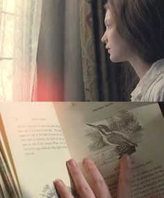 """I am no bird; and no net ensnares me; I am a free human being with an independent will."" - Jane Eyre, Charlotte Bronte"