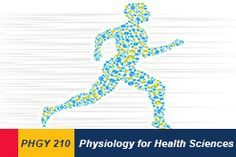 Physiology 210: Physiology for Health Sciences. #queensu