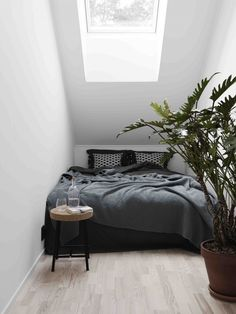 bedrooms with plants