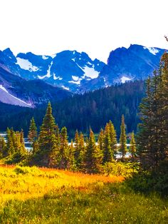 Colorado National Forests
