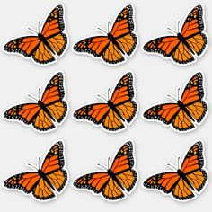 Shop Monarch Butterfly Countour Stickers Sheet created by buxmontweb. Aesthetic Grunge Tumblr, Butterfly Illustration, Arm Sleeve Tattoos, Disney Phone Wallpaper, Design Your Own Stickers, Butterfly Wallpaper, Sticker Shop, Planner, Monarch Butterfly