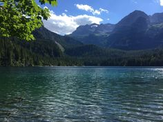 Qué ver en Trento? | Lago di Tovel y Lago di Caldonazzo - Bocas de Pato Mountains, Nature, Travel, Lakes, Italia, Natural Playgrounds, Mouths, Adventure, Fotografia