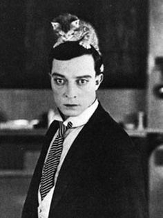 Buster Keaton is listed (or ranked) 17 on the list Cool Old Photos of Celebrities with Their Cats Crazy Cat Lady, Crazy Cats, I Love Cats, Cool Cats, Patricia Highsmith, Buster Keaton, Celebrities With Cats, Celebs, Men With Cats