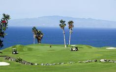Discover the Special Offers of Royal Garden Villas & Spa, such as the Honeymoon Special, Golf Royal, Sailing with Dolphins. The best luxury villas in Tenerife near golf and activities! Tenerife, Honeymoon Special, Garden Villa, Hotels, Royal Garden, Luxury Villa, Sailing, Golf Courses, La Gomera