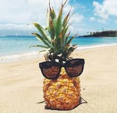 Image result for tumblr sunglasses beach