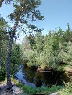 Bend Siberian river