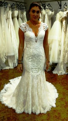 Lillian West Bridal A-line lace ball gown at Absolute Haven Bridal in Tallahassee, Florida (850)222-1197