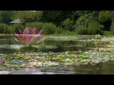 Water Caress - Tom Barabas & Dean Evenson ♥ So Beautiful and Peaceful (^_^) I just Love Tatiana Blue's video's ...