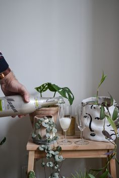 [On lit] Celebrating new beginnings! Non Alcoholic Sparkling Wine, Face Planters, Old Apartments, Minimalist Home, New Beginnings, Plant Hanger, Sweet Home, Creations, Houseplants