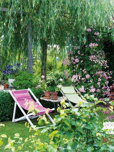 Mitt i trädgården, mellan de två uteplatserna, står en hängpil som har vuxit upp och blivit huvudattraktion på bara några år. Längst bak på tomten har Robert sin köksträdgård med odlingsbäddar, bärbuskar, fruktträd, kompost och växthus. Solens strålar silas till ett skönt ljus under hängpilen och rosen 'Valdemar' prunkar intill. Evas och Roberts favoritplats.