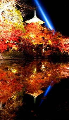 Illuminated Touji temple and autumn leaves - Kyoto Beautiful World, Beautiful Places, Beautiful Pictures, Monuments, Places Around The World, Around The Worlds, Kiyomizu Temple, Japan Landscape, Go To Japan