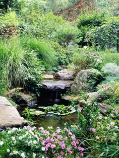 A small pond with a stream. A pump recirculates the water from the end of the stream back to the waterfall. It's a great place to relax and enjoy birds, which are drawn to the water. Moving water helps keep mosquitoes from laying eggs in the water feature. A few small fish also help keep mosquitoes from being a problem.