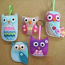 Owl Felt kit. Need, not a want.