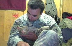soldier saves cat in afghanistan