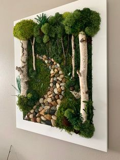 Real Preserved Moss w/ Birch Branches. Home Decor. Mother's Day Moss Wall Art, Moss Art, Plant Wall, Plant Decor, Garden Art, Garden Design, Birch Branches, Succulent Wall, Deco Floral