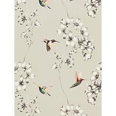 Buy Harlequin Amazilia Wallpaper Online at johnlewis.com