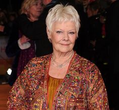 Dame Judi Dench at the premiere of 'The Second Best Exotic Marigold Hotel' in London