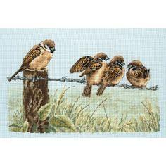 Mussen op prikkeldraad : Vogels - De Spinnerij