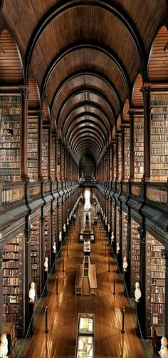 I love this stunning library at Trinity College in Dublin. I've strolled through it many times during my trips to Dublin. The Long Room a the Old Library. If you ever get to Dublin, don't miss this jaw dropping piece of architecture and history. Trinity Library, Trinity College Dublin, Book Of Kells, World's Most Beautiful, Beautiful Places, Absolutely Gorgeous, It's Wonderful, Hello Beautiful, Beautiful Boys