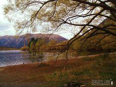 Reids Farm, Lake Taupo, New Zealand. #beautifullnewzealand . Landscape photograpy by Dorothy Lane Photography. dorothylane.co.nz