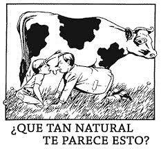 Lo anti natural que se ve tomar leche de vaca.