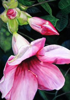 """Contemporary Painting - """"Pretty in Pink"""" (Original Art from Judy Nunno)"""