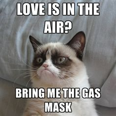 Grumpy cat good - Love is in the air? bring me the gas mask