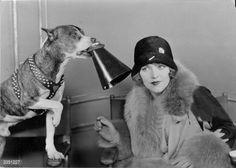 MILDRED DAVIS (WIFE OF HAROLD LLOYD) & PAL THE WONDER DOG~CIRCA 1940