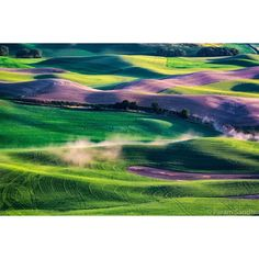 Palouse - Drifting around the summer roads leaving a trail of dust clouds. Good times. by photosisee