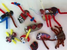 Rock bugs