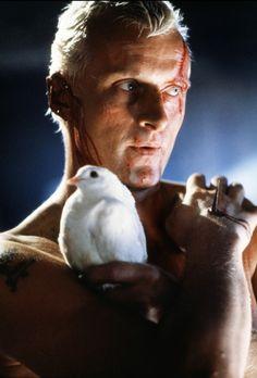 CIA☆こちら映画中央情報局です: Blade Runner : リドリー・スコット監督が、ハリソン・フォードを主演に起用したSF映画の金字塔「ブレードランナー」が、クールな新しい予告編をリリース!! - 映画諜報部員のレアな映画情報・映画批評のブログです