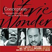Another good compilation album - tribute to Stevie Wonder.