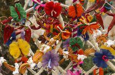 Българският обичай сурвакане, който се извършва в първите часове на Новата година, има за цел да измоли тя да е по-добра и успешна, с повече здраве, любов и благополучие. За извършването му се изпо...