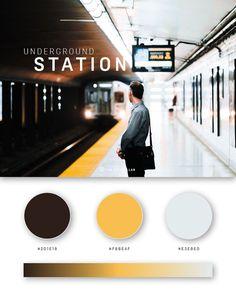 37 Beautiful Color Palettes For Your Next Design Project - Web-Design Movie Color Palette, Flat Color Palette, Colour Pallette, Photography Website Design, Web Colors, Affinity Photo, Web Design, Layout Design, Color Plan