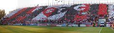Soccer fans.. <3 Spartak Trnava/Slovakia