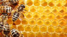 Natural cure for acne honey.jpg