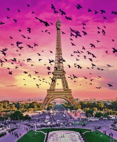 "The Trip Eiffel is genuinely a symbol of Paris. It is the most identifiable function of the city and, in reality, the world. Found in the arrondissement, the Eiffel Tower was a marvel of ""contemporary"" engineering. Eiffel Tower Photography, Paris Photography, Nature Photography, Photography Trips, Beautiful Paris, Paris Love, Paris Pictures, Nature Pictures, Beautiful Pictures"