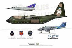 40 años en la FAA