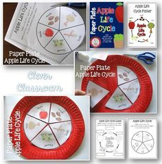Paper plate apple life cycle