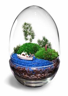 Terrarium Art - Piccoli mondi in vetro Air Fern, Moss Terrarium, Fairy Gardens, Tahiti, Ferns, Bonsai, Paradise, Miniatures, Crafty