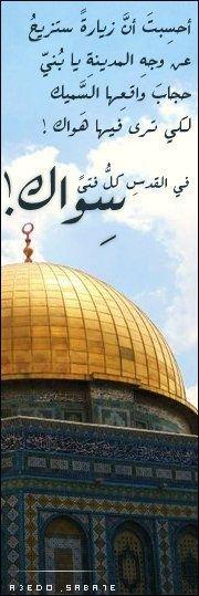 في القدس كل فتى سواك! Palestine, Arabic Typing, Jerusalem, Taj Mahal, Peace, Mosques, Feelings, Islamic Art, Bridal Dresses